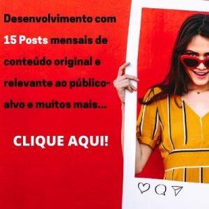 Gestão-midias-sociais-plano-15-post